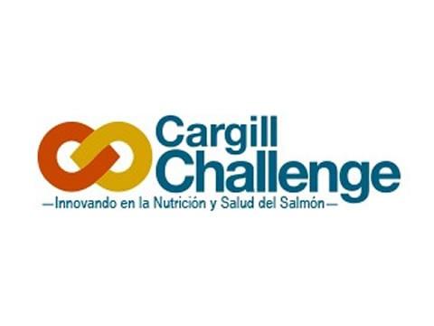 Cargill-UC Challenge - WDesign - Diseño Web Puerto Varas