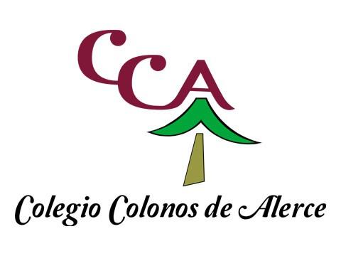 Colegio Colonos - WDesign - Diseño Web Puerto Varas