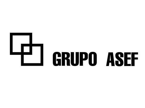 Grupo ASEF - WDesign - Diseño Web Puerto Varas