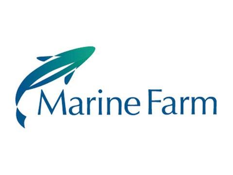 Marinefarm - WDesign - Diseño Web Puerto Varas