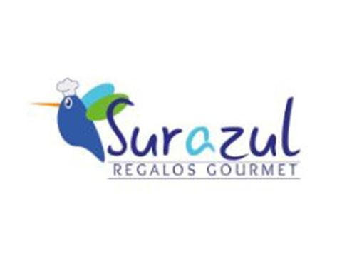 Regalo Sur Azul - WDesign - Diseño Web Puerto Varas