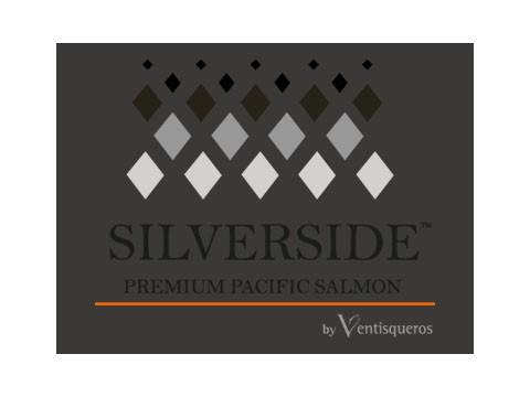 Silver Side - WDesign - Diseño Web Puerto Varas