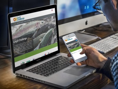 Cargill Challenge - Diseño Web Puerto Varas